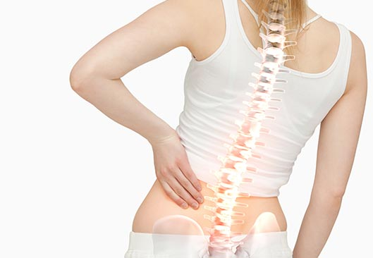 Spine Back Pain - Valley Physiotherapy Clinic